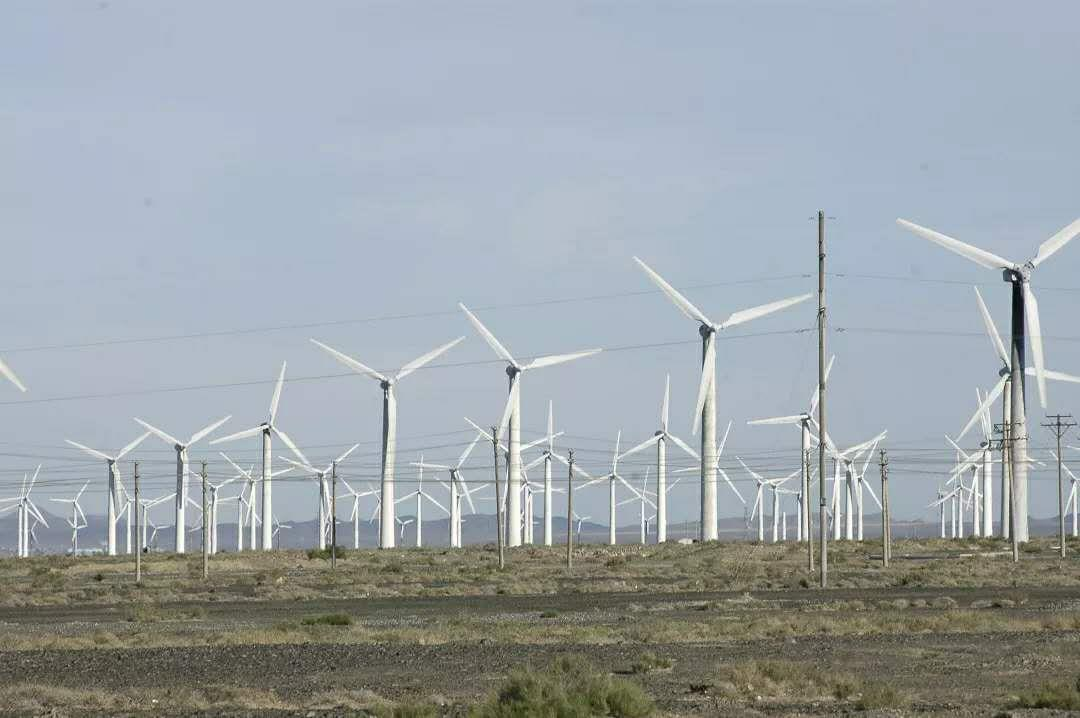 風力發電,清潔新能源,維美匯風電油脂特賣